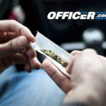 Hound marijuana breathalyzer