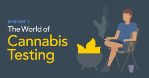 How Employees Are Influencing Cannabis Testing